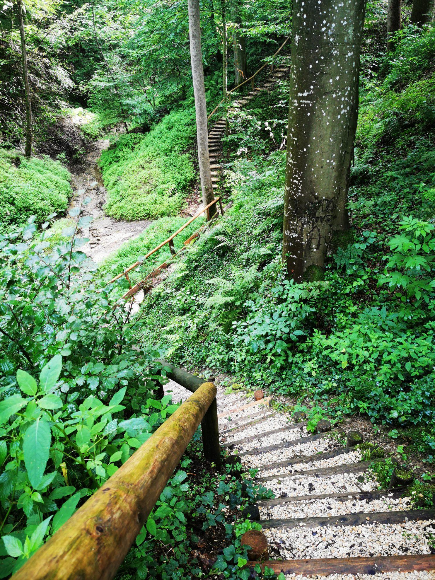 Treppauf und treppab geht es durch den Erlebnispfad in Thannhausen - allemal einen Ausflug wert