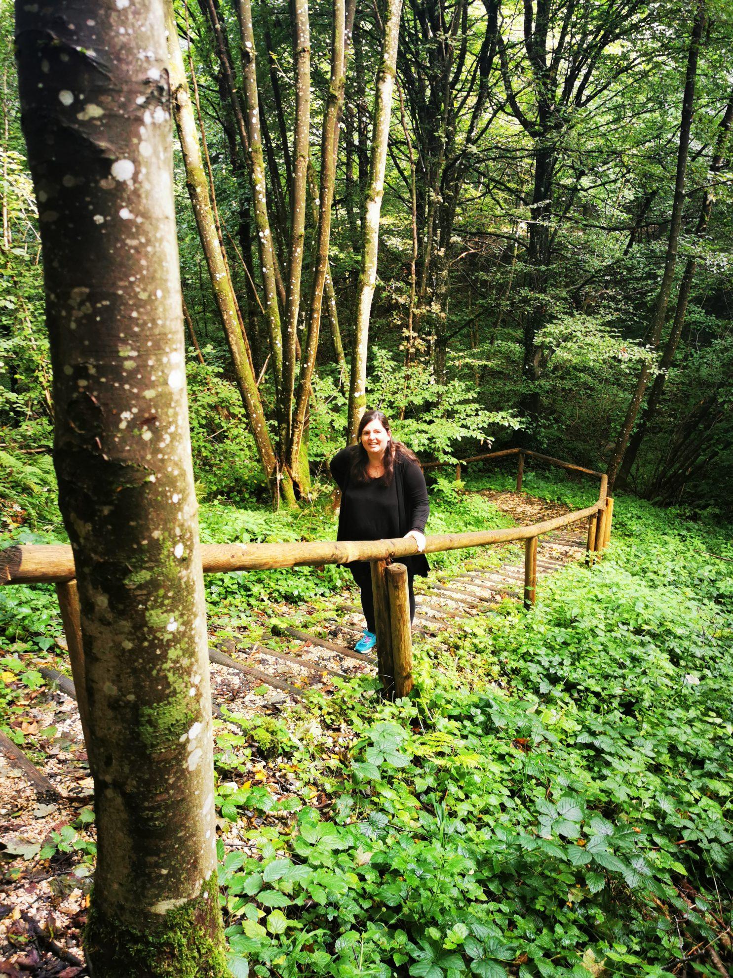 Mit vielen Stufen auf und ab geht es durch den Wald zu mehreren Stationen.