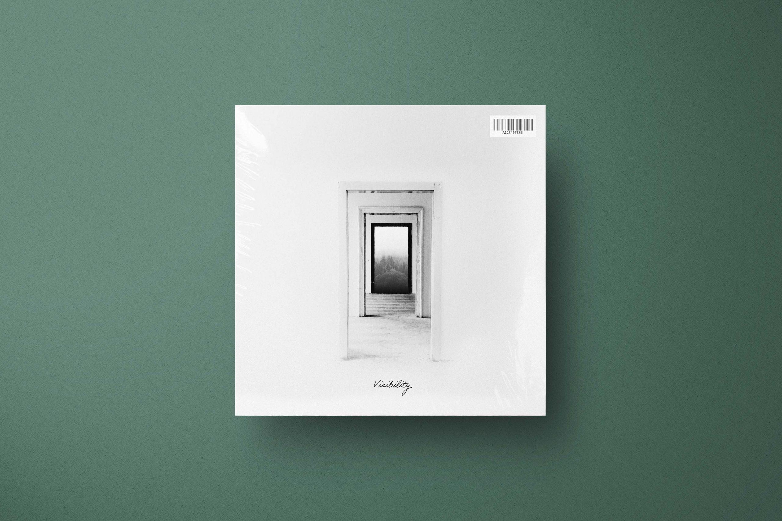 visibility album vinyl cover