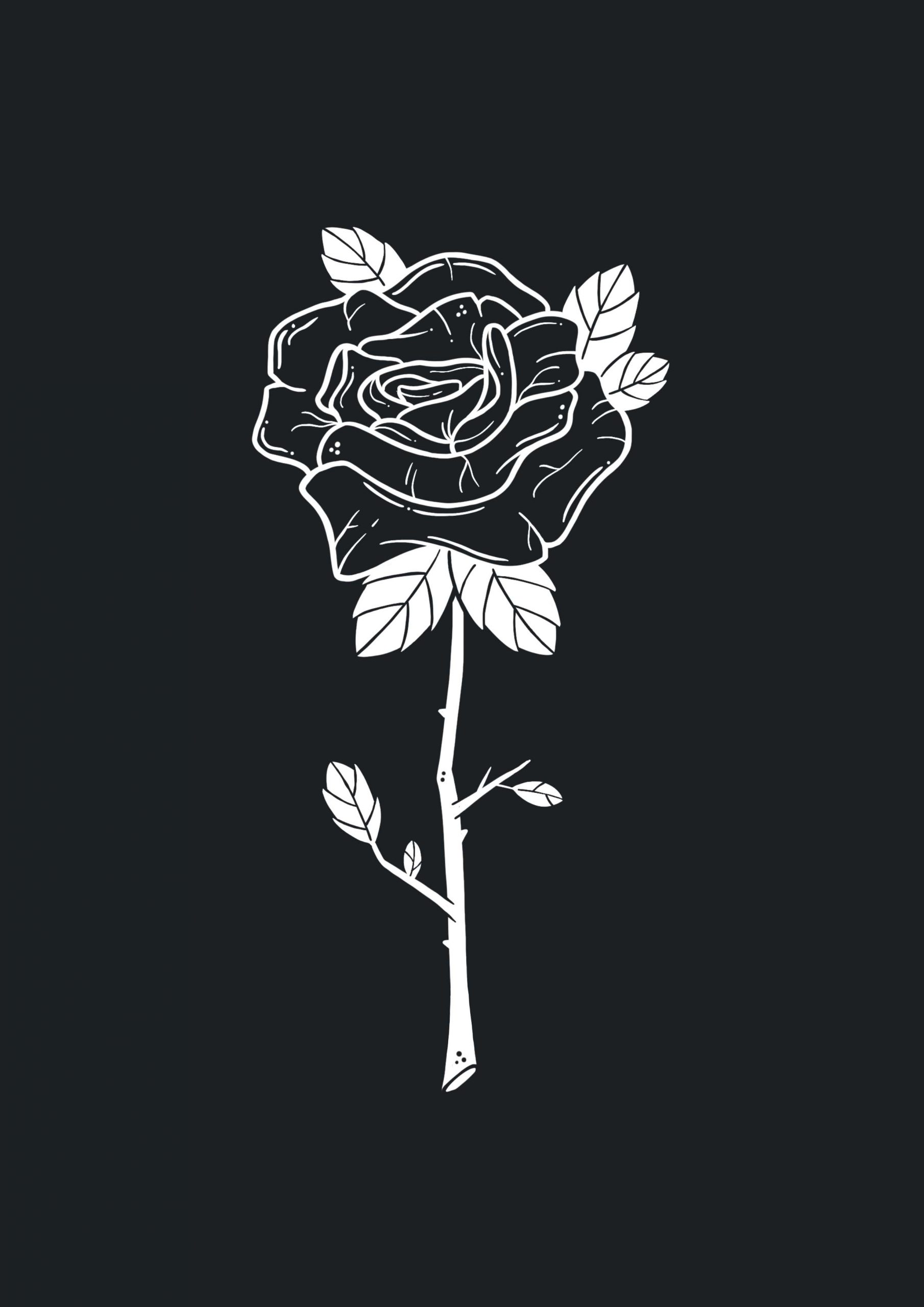 Illustratie van een roos