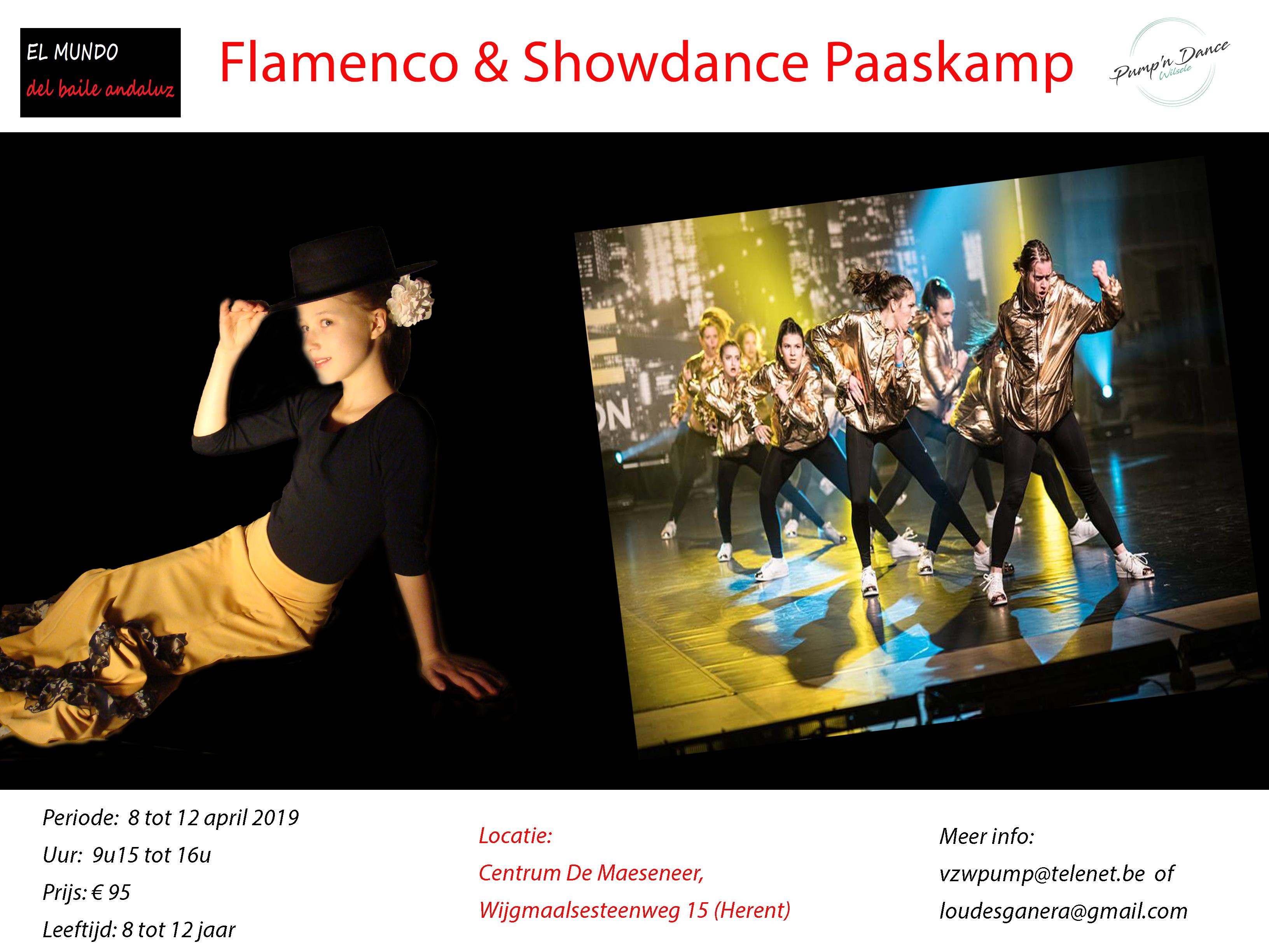 danskamp flamenco showdans
