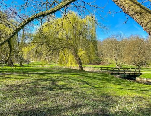 Fotoshoot locatie: Park drie fonteinen in Vilvoorde