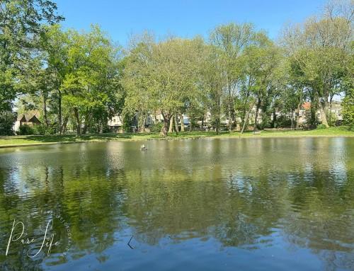 Fotoshoot locatie: Hanssenspark in Vilvoorde