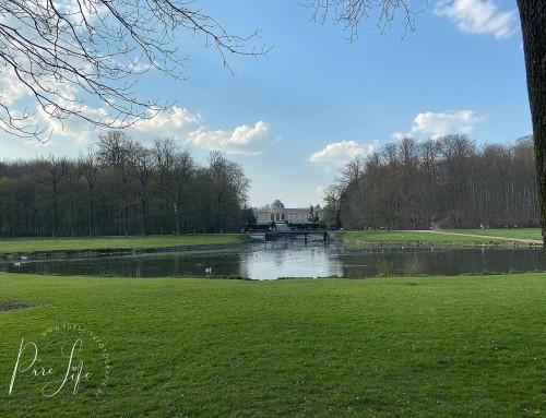 Fotoshoot locatie: Park van Tervuren