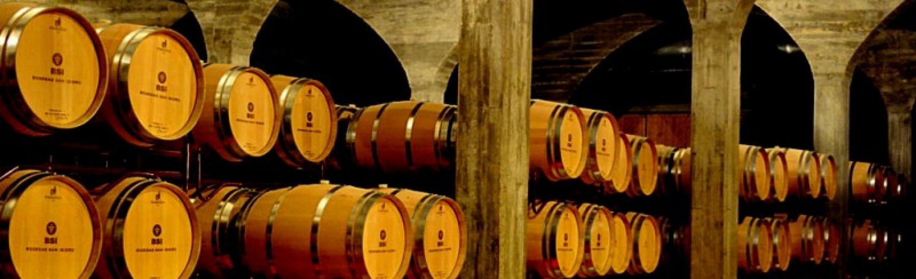 33163_jumilla-wine-route-bodegas-san-isidro_11483729906_large