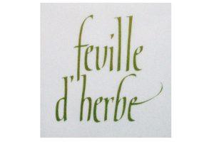 kalligrafisk logotyp