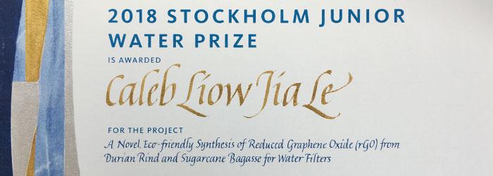kalligrafi. Stockholm Junior Water Prize diplom, 2018
