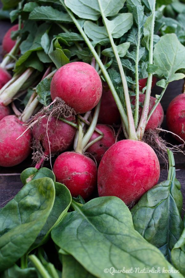 Querbeet-Natuerlichkochen.Ernte Radieschen und Spinat
