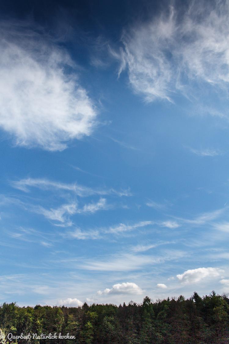 Gartenglück l Übergabe Parzelle l Himmel l Blauer Himmel l Querbeet-Natürlich kochen