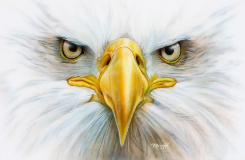 Amerikaanse arend airbrush schilderij op MDF, American eagle.