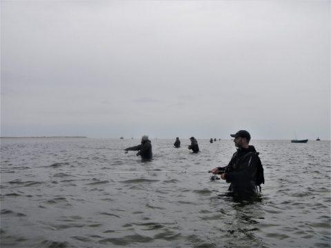 Bestil guidede fisketure for familier via. randersfjordguiden.dk