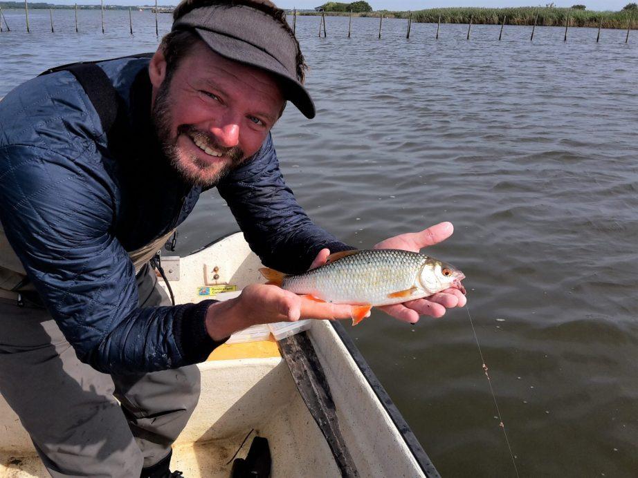 Man kan dyrke småbådsfiskeri i Randers Fjord efter flere spændende fiskearter,