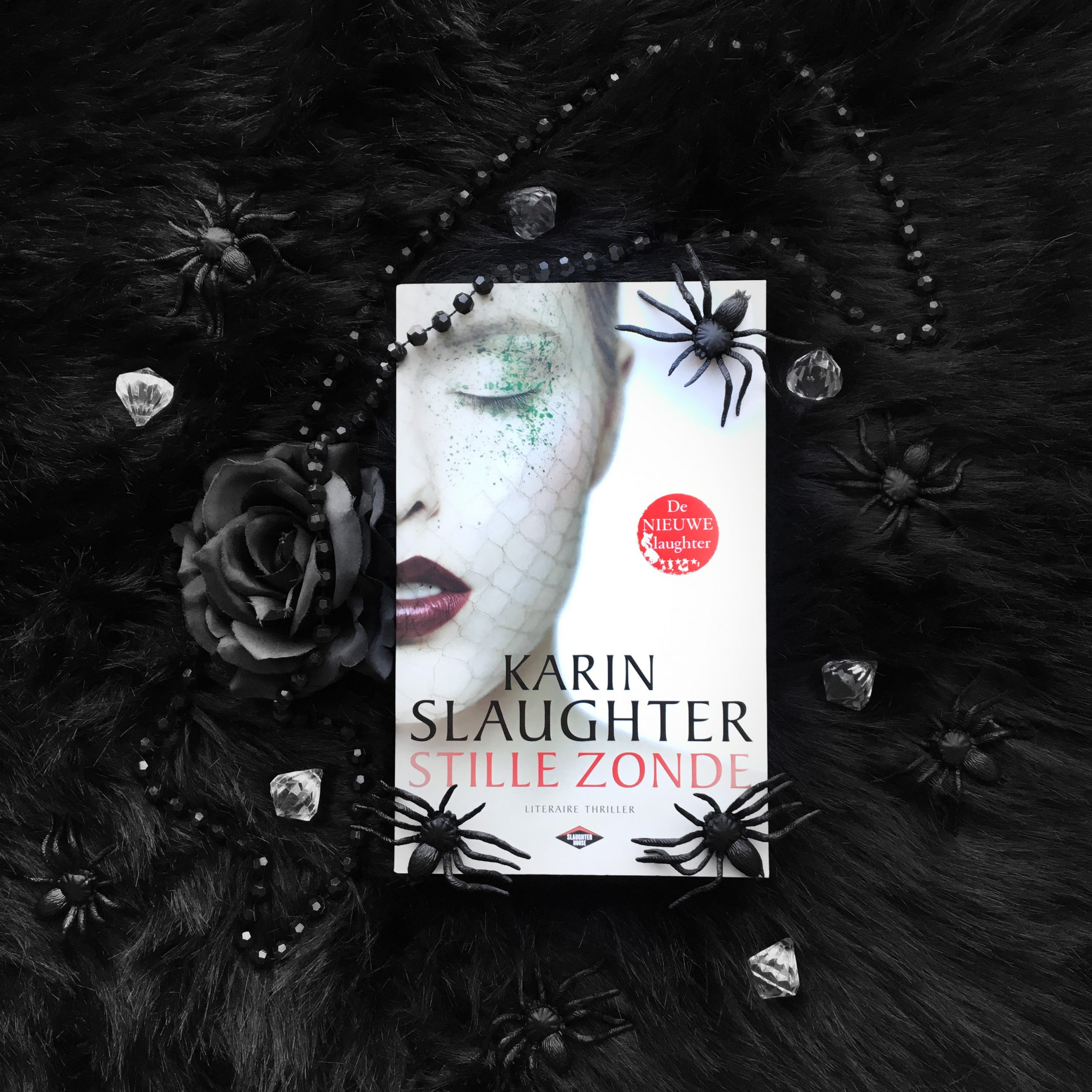 Stille zonde – Karin Slaughter
