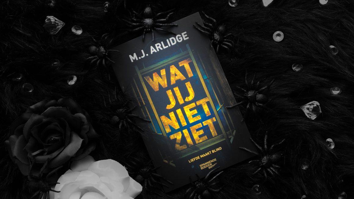 Wat jij niet ziet M.J. Arlidge