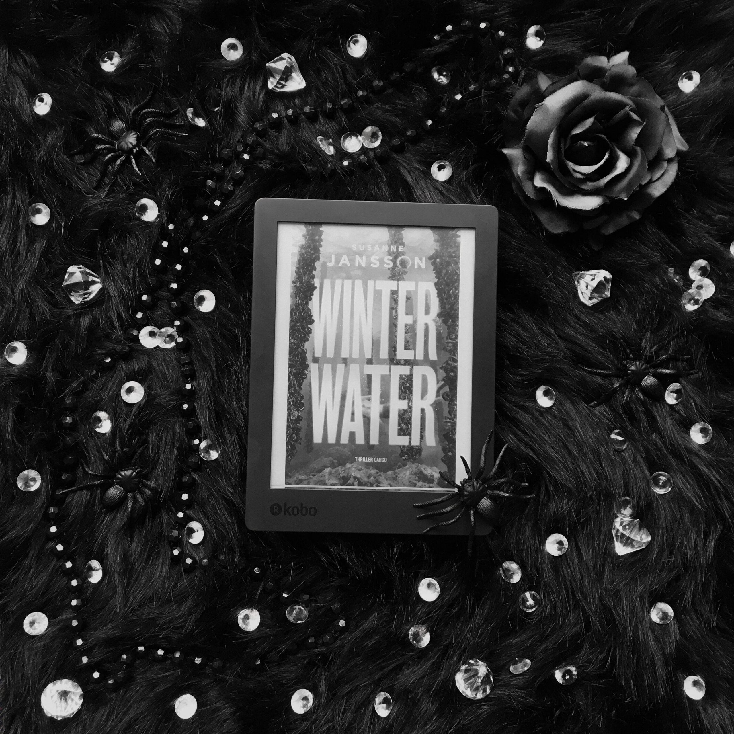 Winterwater - Susanne Jansson