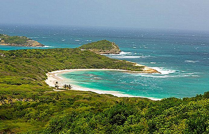 costruire società Antigua e Barbuda