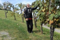 Suedsteirische-Weinstrasse-2020-003