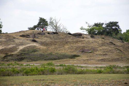 Nationaal Park Maasduinen