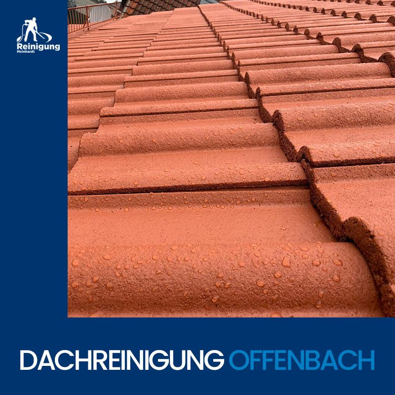 Dachreinigung-Offenbach-Meinhardt-4