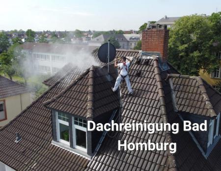 Dachreinigung-Bad-Homburg-Meinhardt