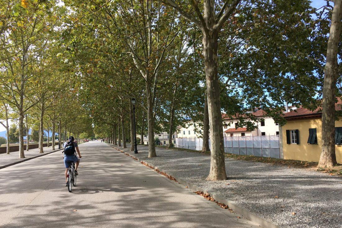 Fietsen op de stadsomwalling in Lucca