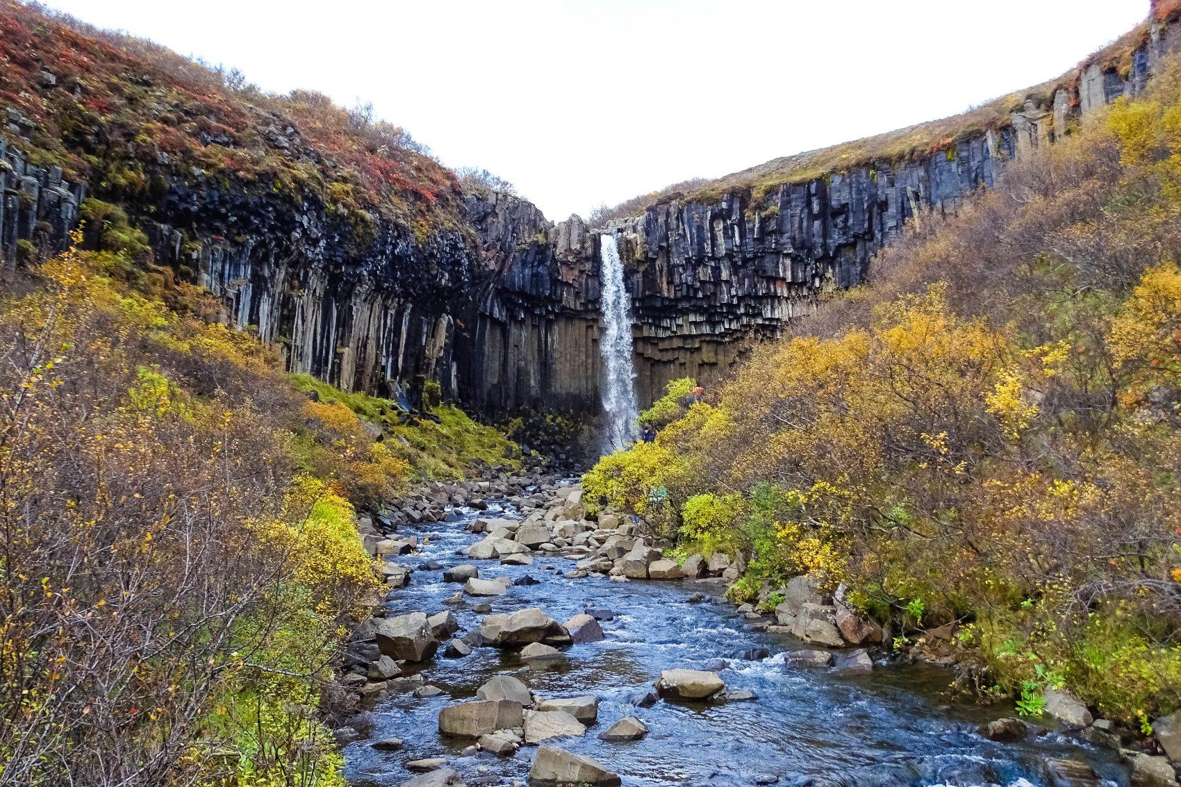Svartifoss waterval zuid-ijsland skaftafell
