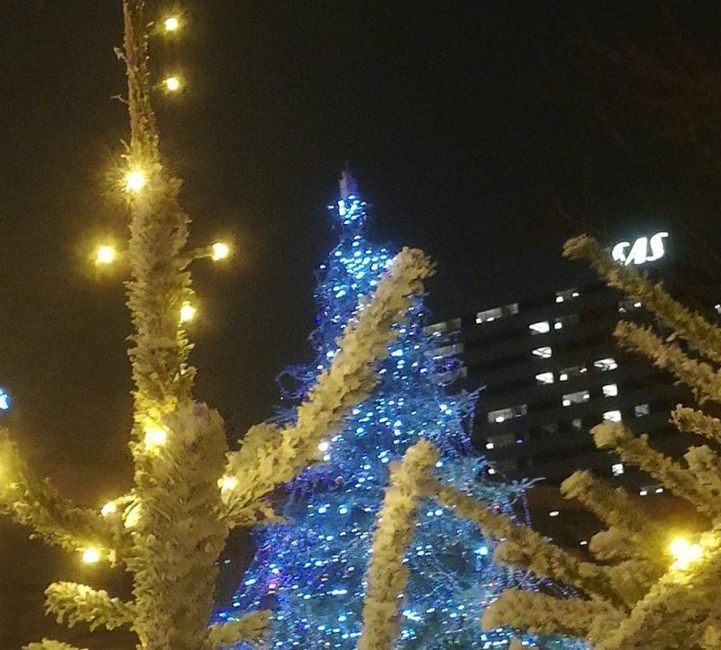 Juletræ i Tivoli