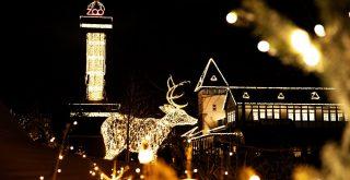 Lys i Zoo i Kbh