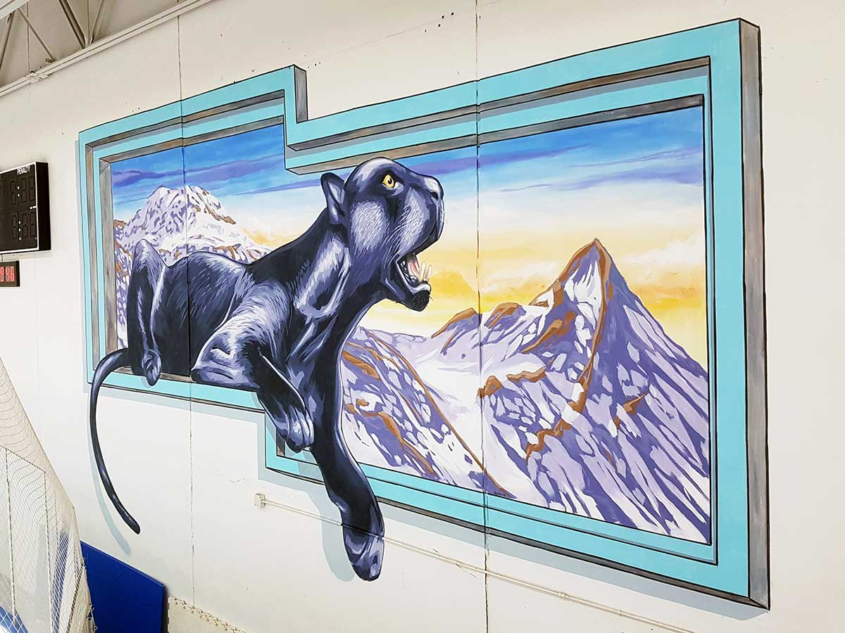 2 3D Streetpaintings at The Ponds of Brookfield Ice Arena, Milkwaukee, USA