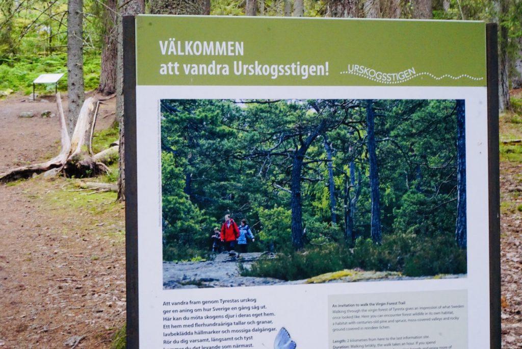 Skylt som beskriver Urskogsstigen i Tyresta Nationalpark.