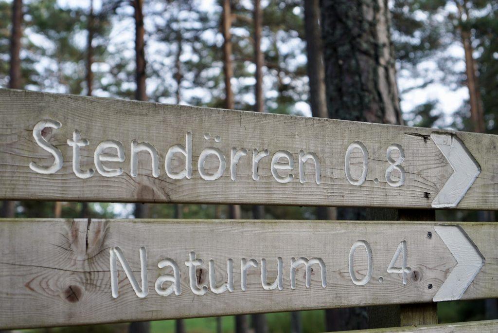 Skyltar mot Stendörrens naturreservat och Naturum.