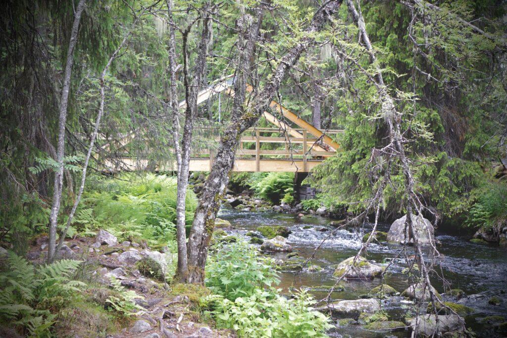 Bro i skogen runt Njupeskär