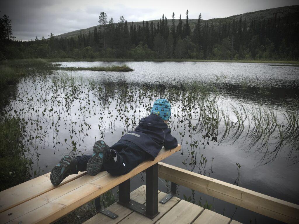 Valter tittar ner i sjö i Fulufjällets nationalpark.