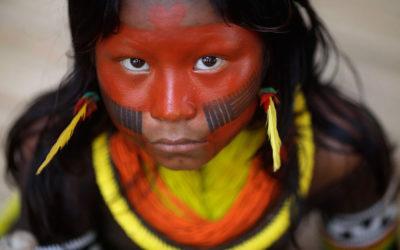 Dæmninger og destruktion: om vandkraft og udvinding i Amazonas