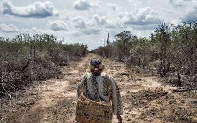 IWGIA: Oprindelige folk er de nye frontløbere i klimadebatten