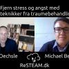 Små og store traumer – metoder fra traumeterapi kan hjælpe mod stress