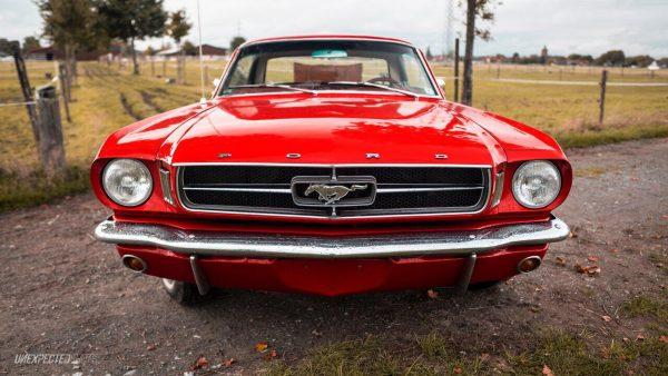 Frontansicht Ford Mustang Oldtimer auf einer Landstraße mit Mustang Logo