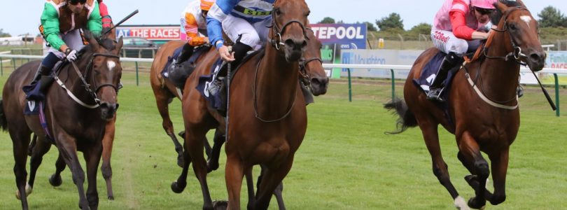 Is Logician Gosden's Next Great Horse?