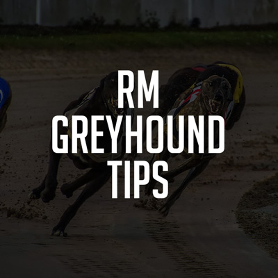 RM Greyhound Tips Review