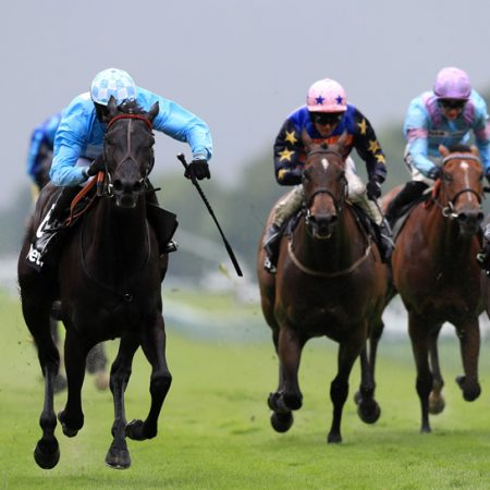 10 Best Horse Racing Tipsters