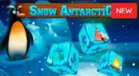 Snow Antarctic Dice