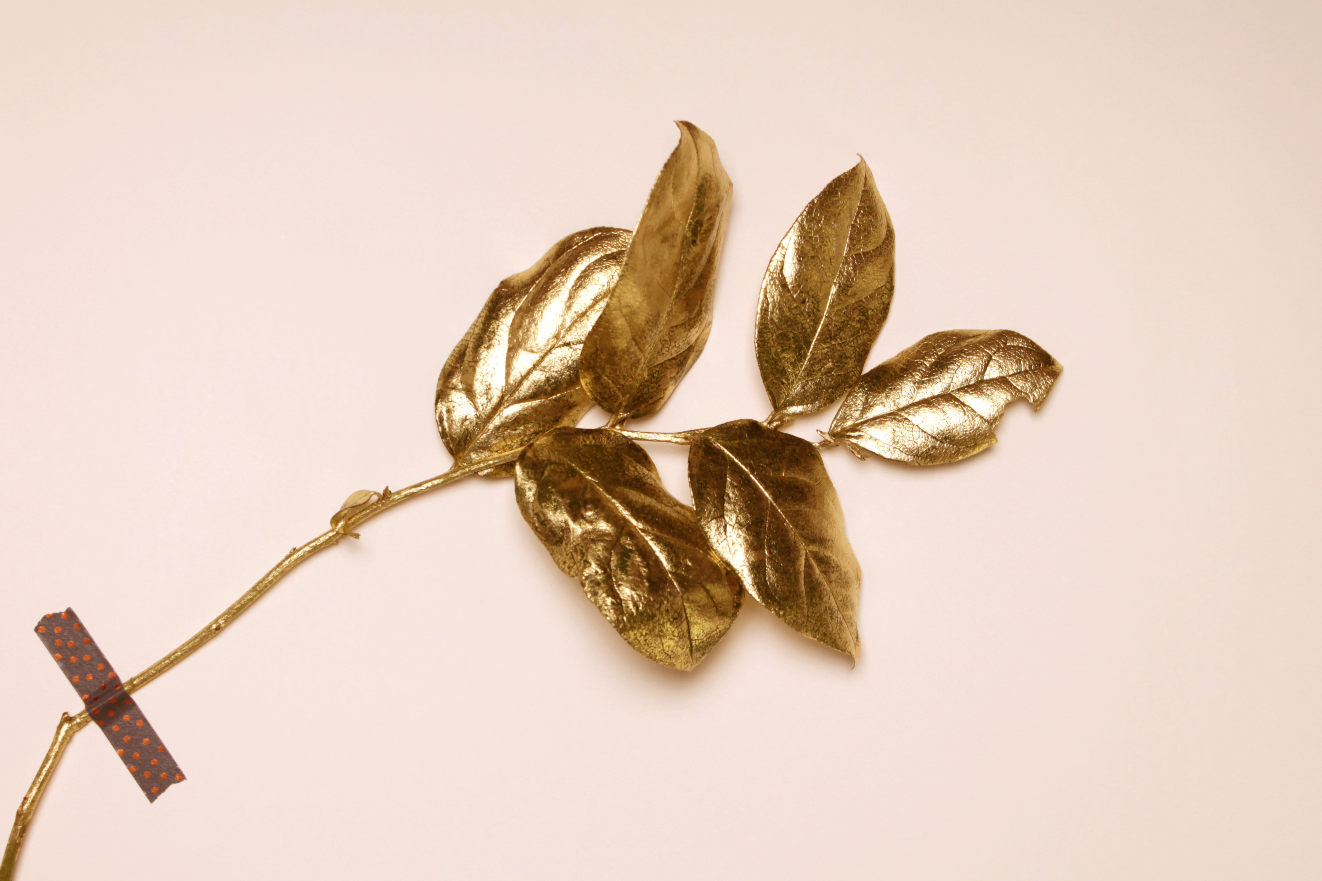 Golden leaf on pink background