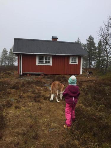 Eva Lena Karlsson 06