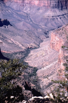 149 Grand Canyon NP
