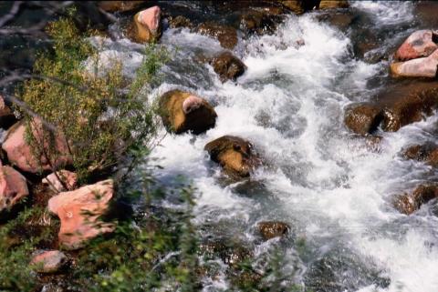 309 Verde River