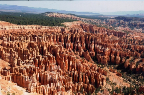 406 Bryce NP