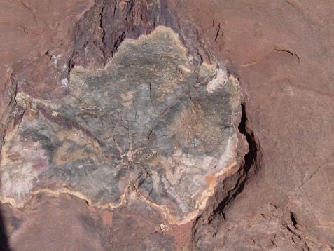 vakantie 2003 Canyonlands NP 29