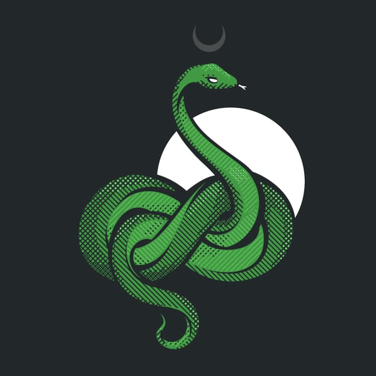 An Illustration of a snake