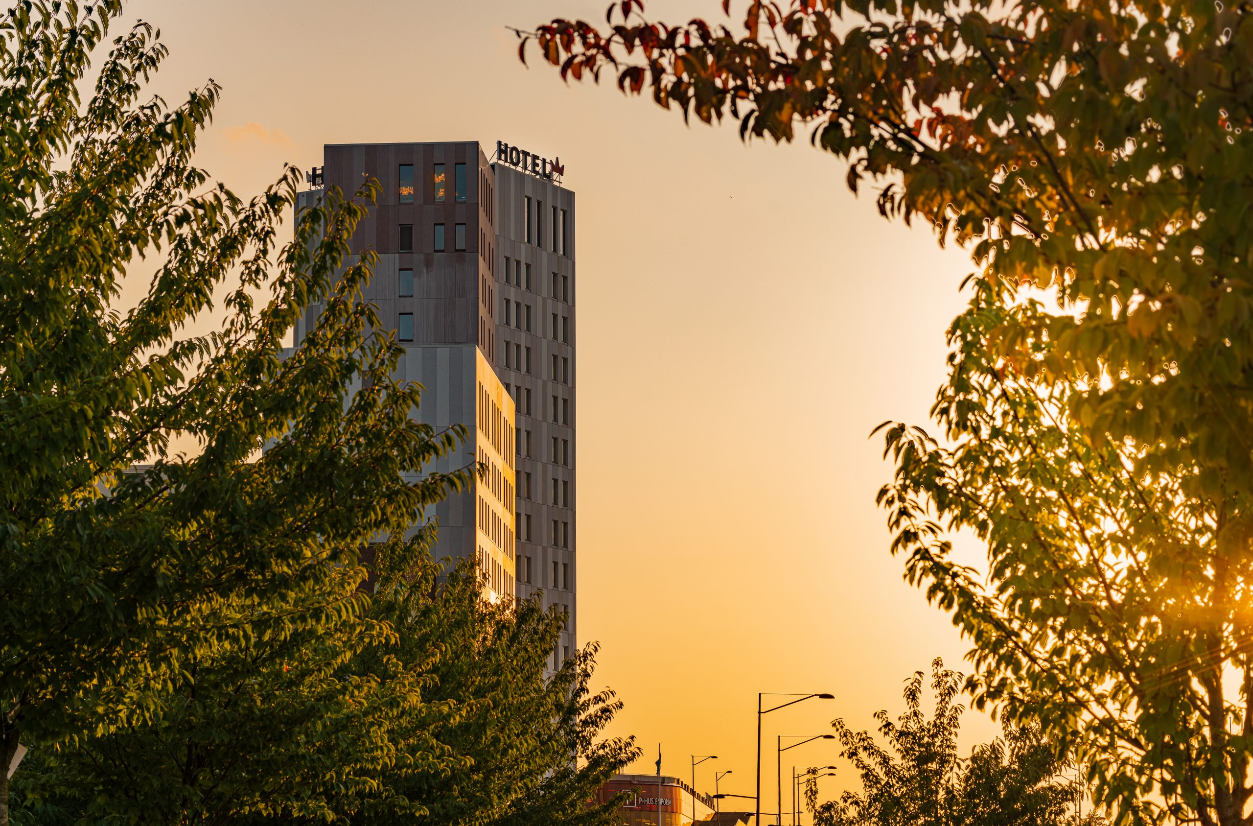 Malmö Arena Hotel, Hotel, Sunshine, Evening, Hotel, Trees