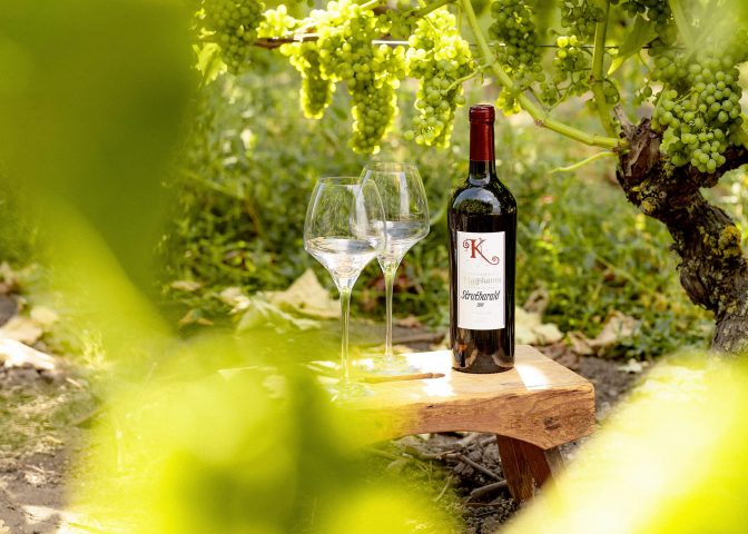 Bottle of wine with two glasses in the shade.Summer